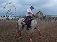 équitation de travail
