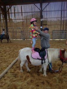 activité poney